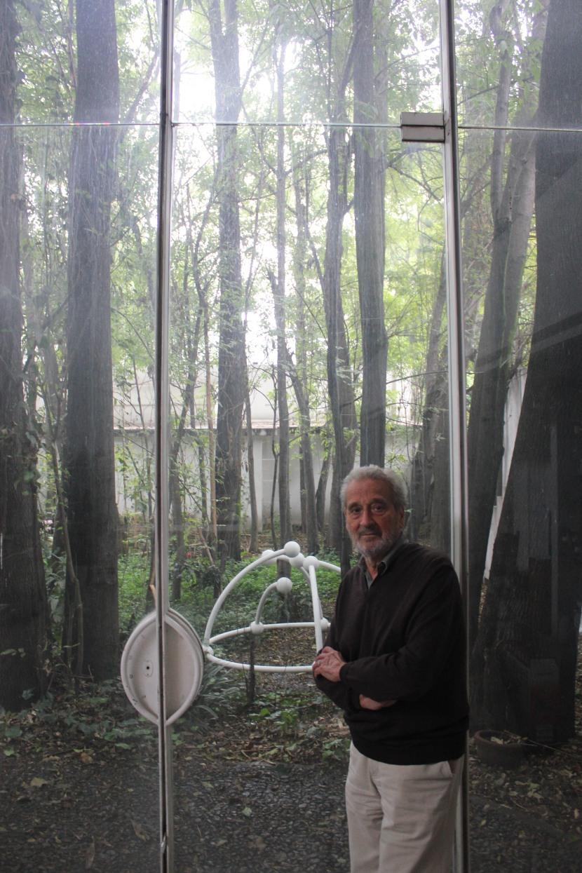Vicente Rojo y los árboles de su taller. Foto: Emilio Alvarez