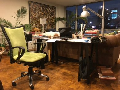 Detalle de mi estudio integrado en el área social de mi departamento