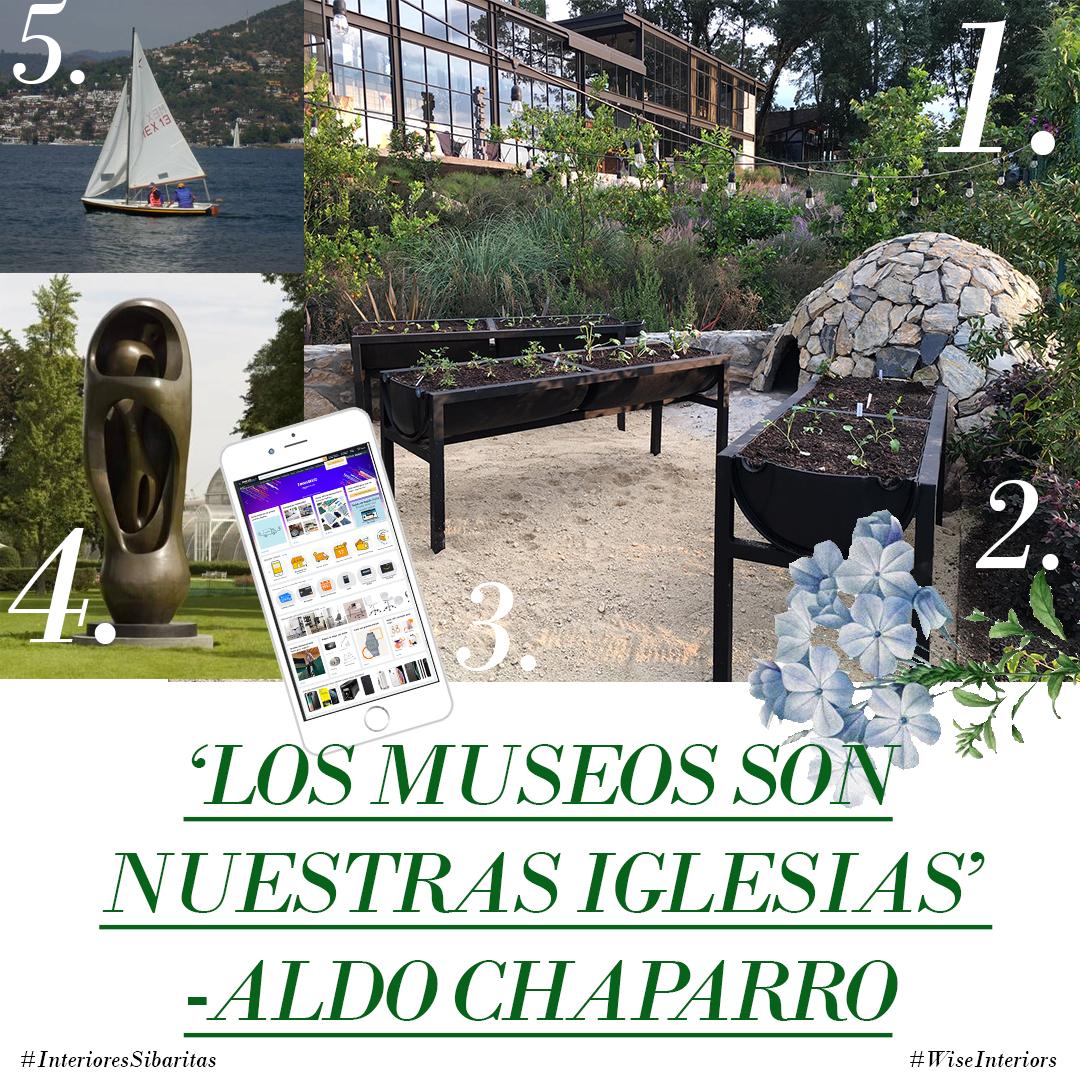 COLLAGE_ALDO